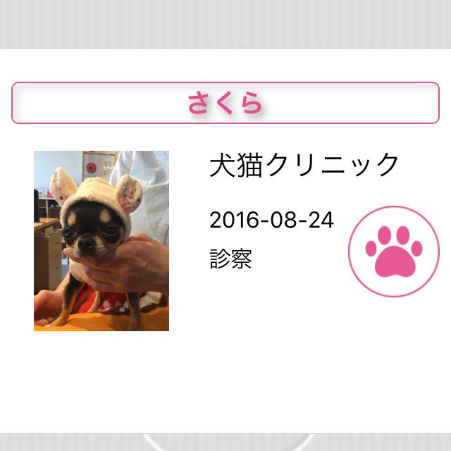 pet_manual_28
