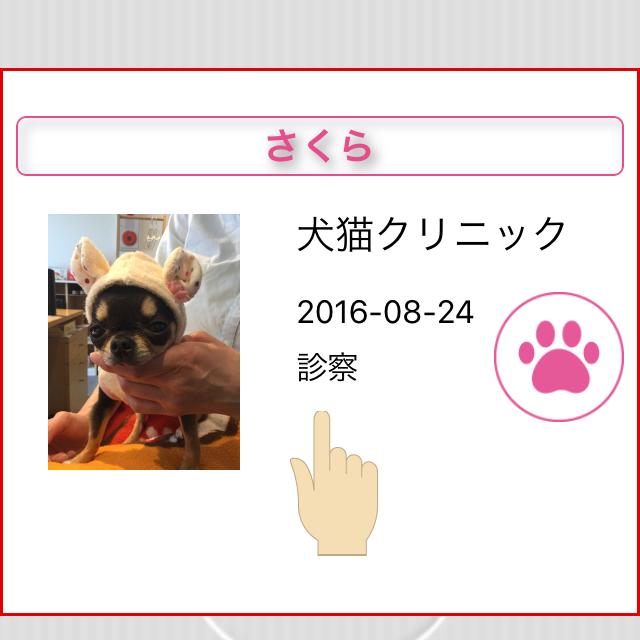 pet_manual_29